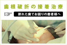 歯根破折の接着治療について